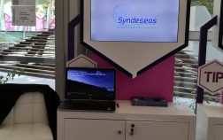 Syndeseas exhibits